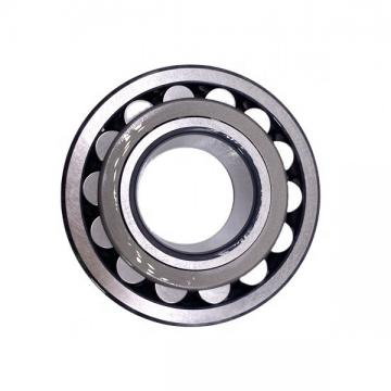 High Quality Hybrid Ceramic Ball Bearing 6805 2RS SUS 440 From China Factory