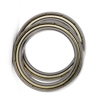 Ceramic Silicon nitride Si3N4 Waterproof Deep groove sealed ball bearing 6000 6001 6002 6003 6004