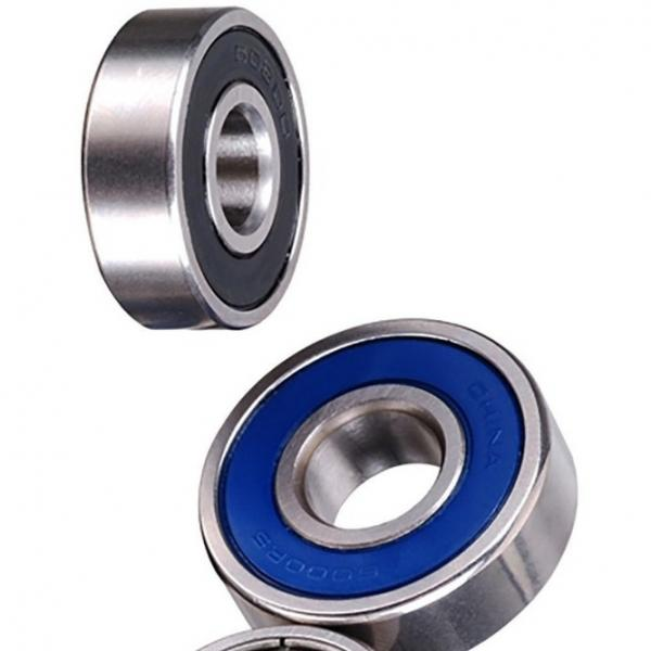 High Precision High Quality Hot Sale SKF Needle Roller Bearing Nkis 25 Nkib 5909 with Inner Ring #1 image